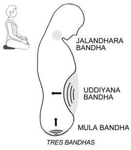 джаландхара бандха в йоге